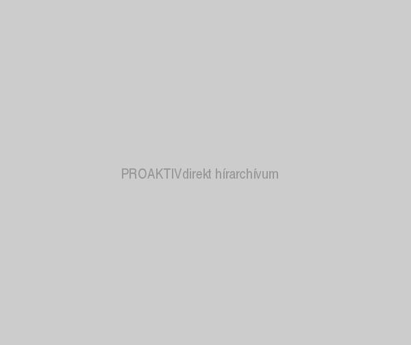 Saját készítésű kerti bútorok - PROAKTIVdirekt Életmód ...